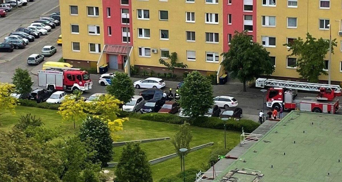 Anyját akarta felrobbantani egy nő Kispesten, kivonult a TEK – fotók