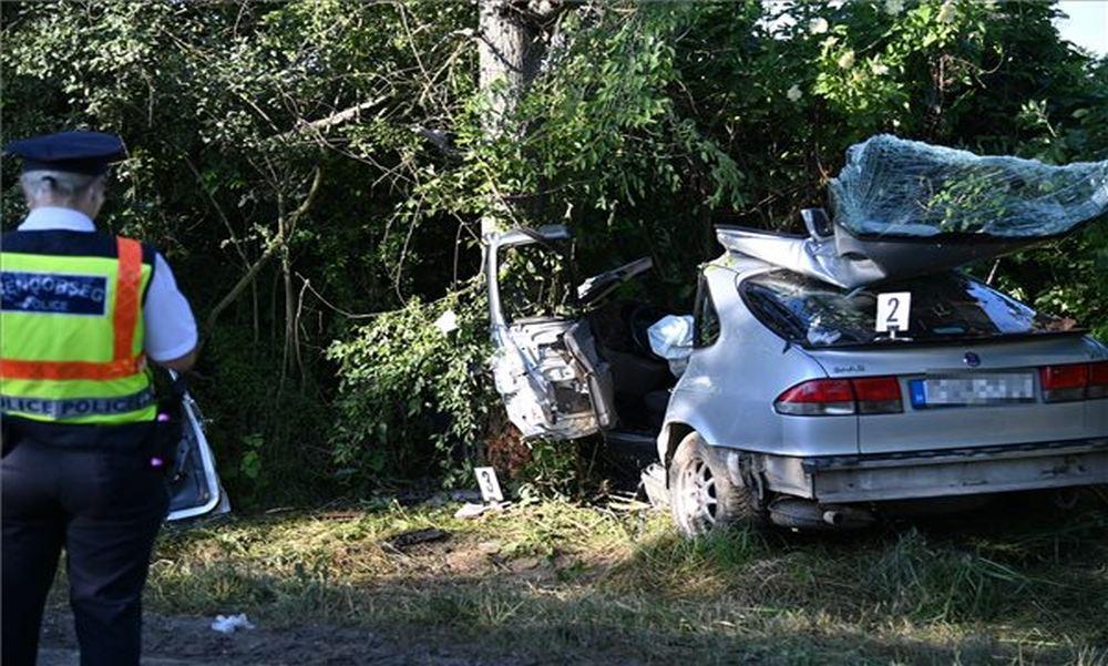 Fának csapódott egy autó Biatorbágy közelében, a budapesti utas a helyszínen életét vesztette