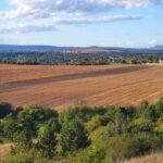 Bekebelezési eljárás, a termőföld közös tulajdonának megszüntetése sok tulajdonos rémálma lesz