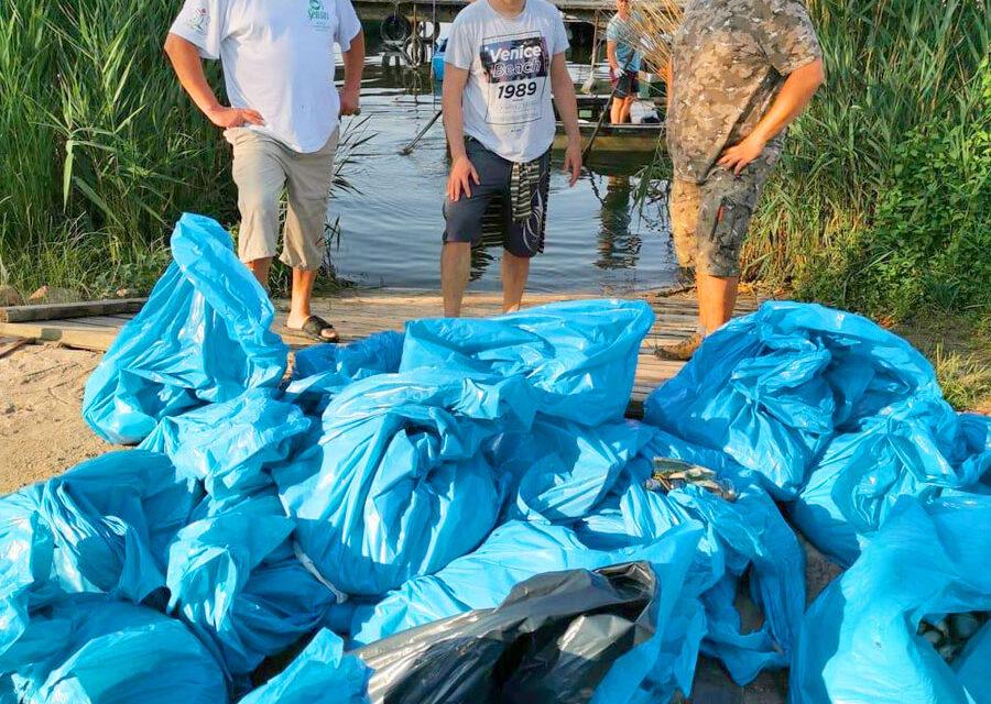 Senki nem jött döglött halat fogni, biológiai katasztrófa, 110 mázsa hal pusztult el a Velencei-tóban