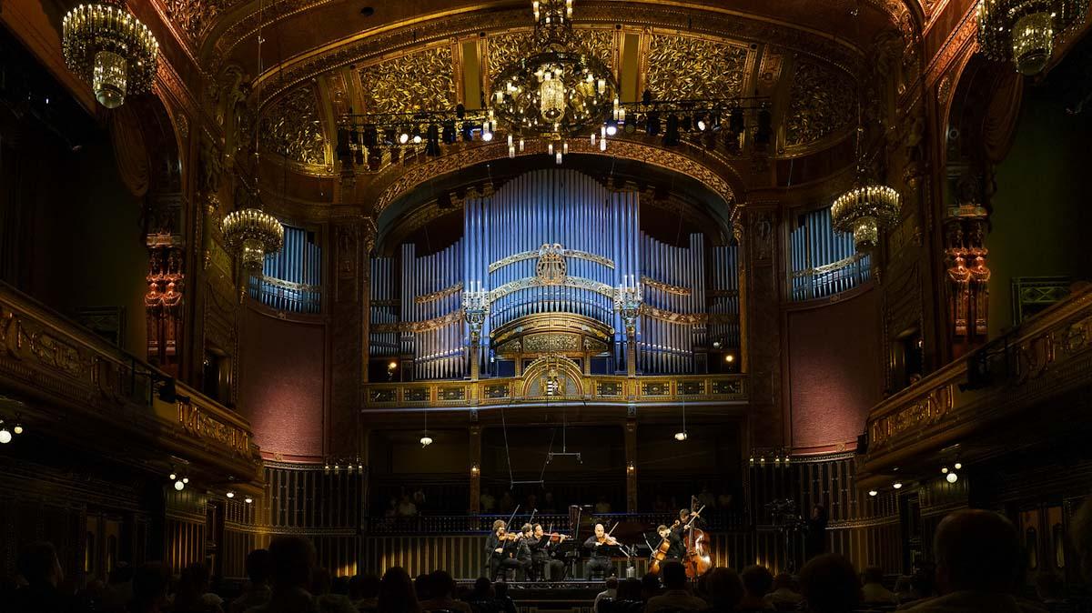 Lápréti rezervátumban bóklászni Budapesten, sétakoncertet élvezni a zsinagógában, fluoreszkálva kincset keresni este – a legjobb programok péntekre