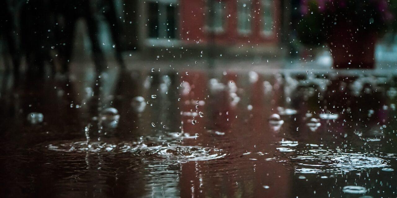 Nem csitulnak a viharok: letarolják az országot a heves zivatarok, riasztást adtak ki, Budapesten is egész nap tombolhat a szél – Van ahol, 50 mm eső is hullhat