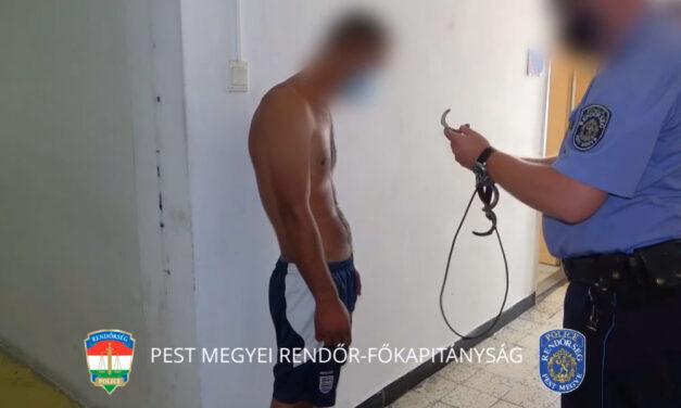 Tragikus vége lett a iszogatásnak: elvágta cimborája nyakát egy fiatal férfi Sződligeten