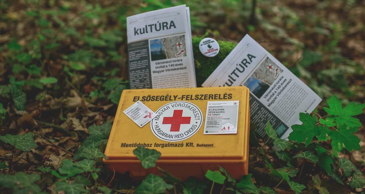 Kincskeresés a Vöröskereszttel, reggeli a KisVillában, retro a belvárosban, ókor Tácon, etűdök a Lóvasúton – tartalmas hétfői programok