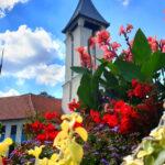 Díjeső Budapesten és környékén: Veresegyház, Etyek és a 4. kerület virágainak nem tudott ellenállni a zsűri